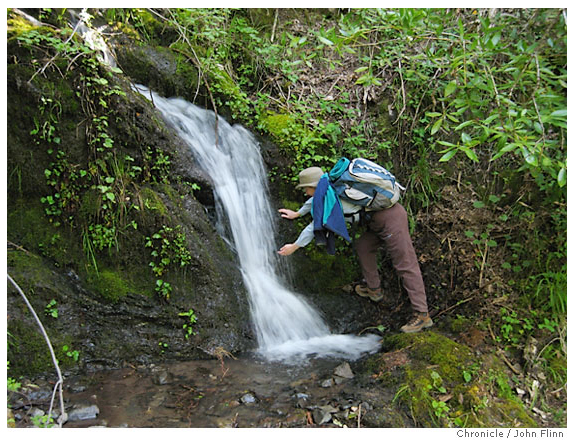 Hiker_stream